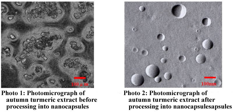 comparison between autumn turmeric extract before and after processing into nanocapsules