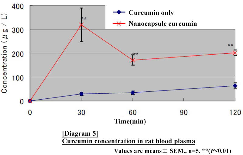 Curcumin concentration in rat blood plasma