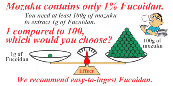 Only 10g of more than 85% pure fucoidan can be extracted from 1kg of mozuku
