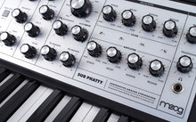 Load image into Gallery viewer, Moog Sub Phatty