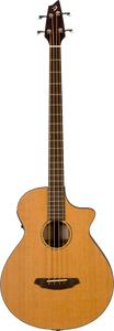 Breedlove BJ350 Acoustic Bass