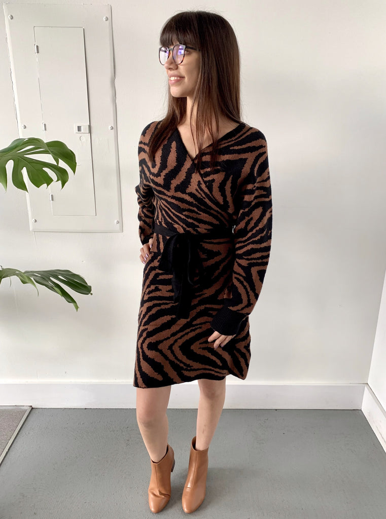 ZEBRA CROSSING SWEATER DRESS