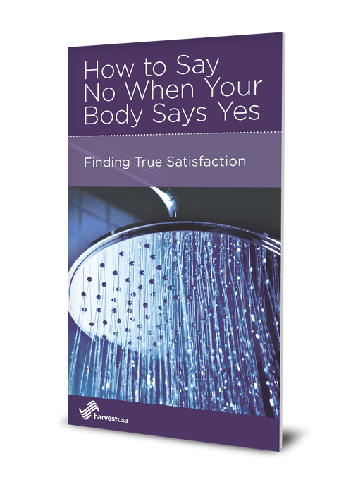How to Say No When Your Body Says Yes: Finding True Satisfaction (Minibook)