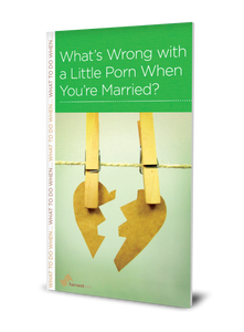 What's Wrong with a Little Porn When You're Married? (Minibook)