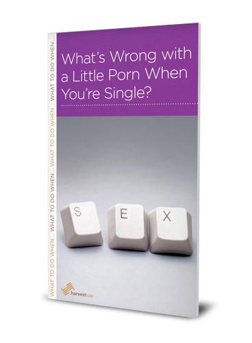 What's Wrong with a Little Porn When You're Single? (Minibook)