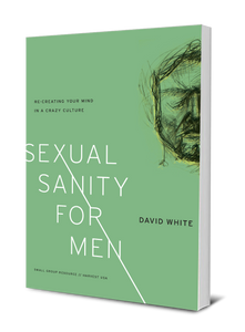 Sexual Sanity for Men: Re-Creating Your Mind in a Crazy Culture