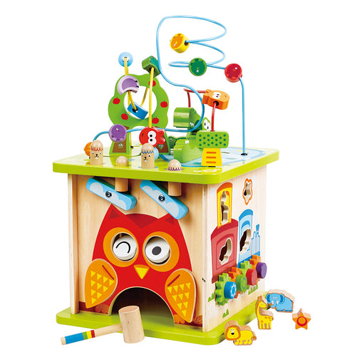 Hape Wild Safari Activity Cube