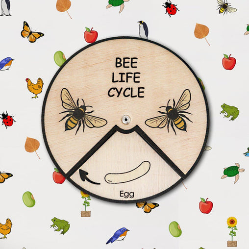 Minisko Learning Wheel Animal Lifecycle Bee