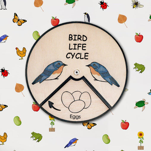Minisko Learning Wheel Animal Lifecycle Bird