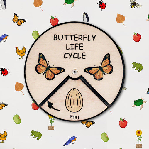 Minisko Learning Wheel Animal Lifecycle Butterfly