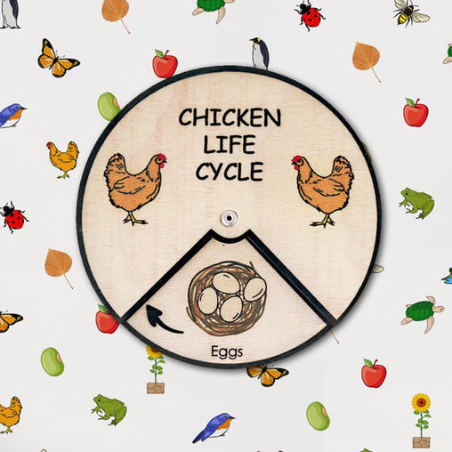 Minisko Learning Wheel Animal Lifecycle Chicken