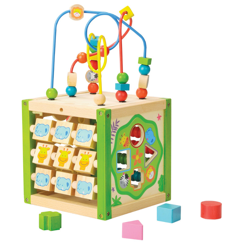 EverEarth My First Multi-Play Activity Cube