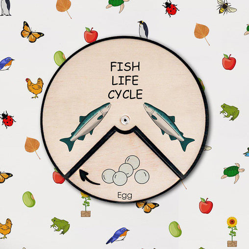 Minisko Learning Wheel Animal Lifecycle Fish
