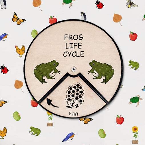 Minisko Learning Wheel Animal Lifecycle Frog