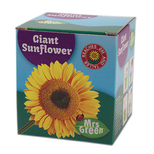 Mrs Green Giant Sunflower Packaging
