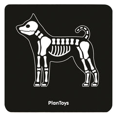 PlanToys Vet Set Xray Dog