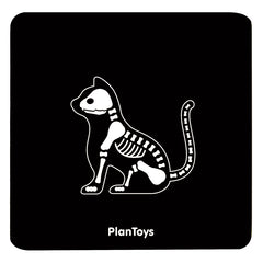 PlanToys Vet Set Xray Cat