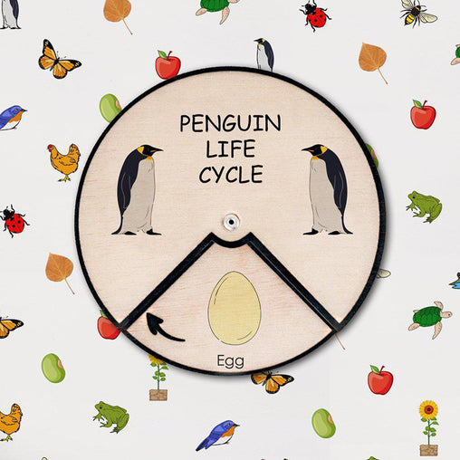 Minisko Learning Wheel Animal Lifecycle Penguin