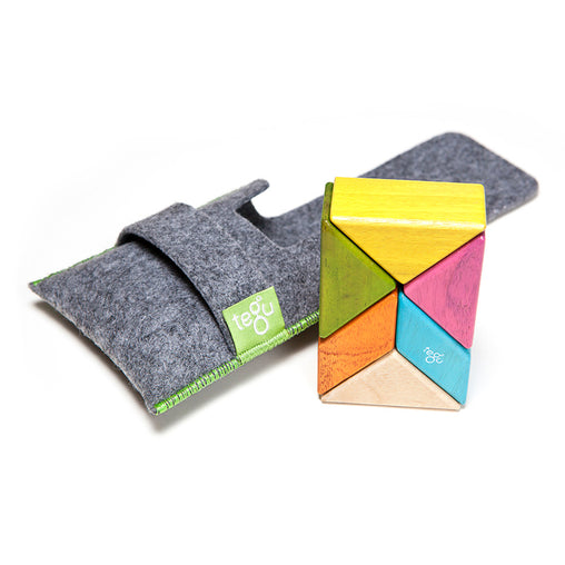 Tegu Pocket Pouch Prism 6 piece - Tints
