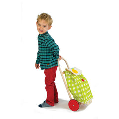 Tender Leaf Toys Shopping Trolley Pull Along with Boy