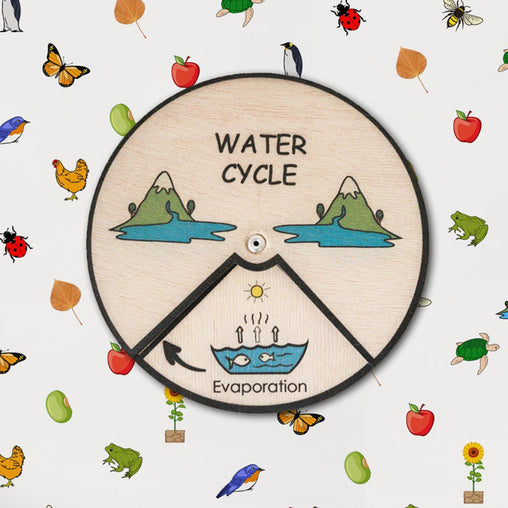 Learning Wheel Nature Lifecycles Water