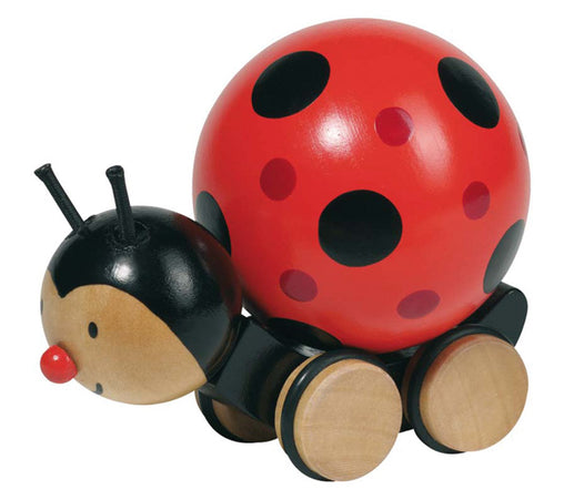 Pushalong Ladybird
