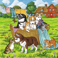 Ravensburger – Cats and Dogs 3x49-piece Puzzle