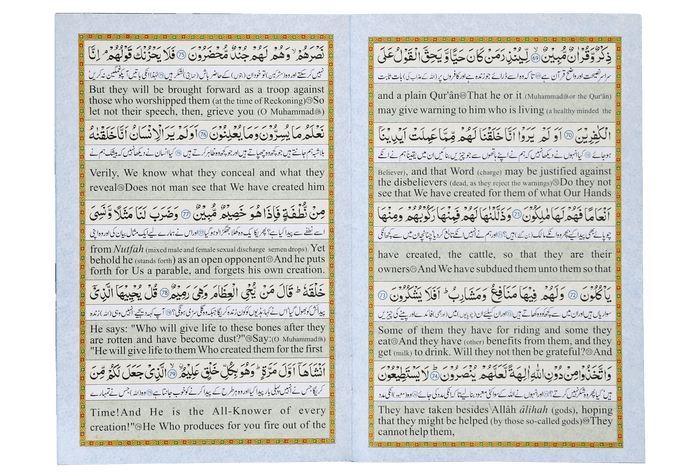 Surah Yaseen (urdu and english)