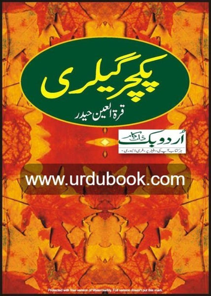 Order your copy of PICTURE GALLERY - پکچرگیلری from Urdu Book to earn reward points along with fast Shipping and chance to win books in the book fair and Urdu bazar online.