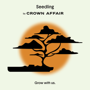 Introducing Seedling, <br>Our New Mentorship Program
