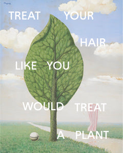 Treat Your Hair Like <br>You Would Treat a Plant