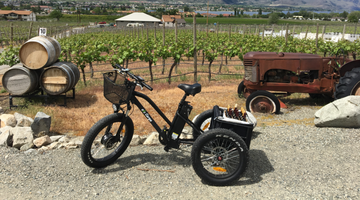 Enjoy a leisurely winery tour on your electric trike