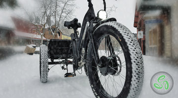 Electric Trike vs Canadian Winter