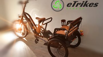 Buying an Electric Trike