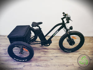 2019 Cargo Electric Trike - Showroom Model - eTrikes Canada