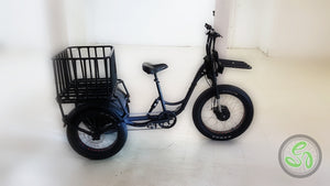 Commercial Electric Tricycle - eTrikes Canada