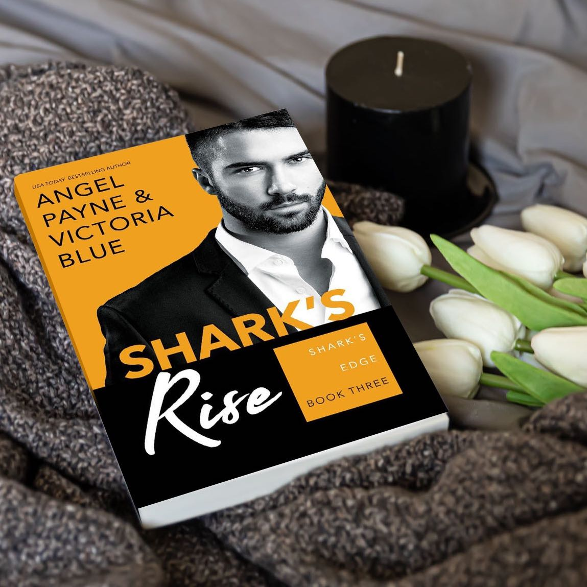 Shark's Rise (Shark's Edge Series Book 3)