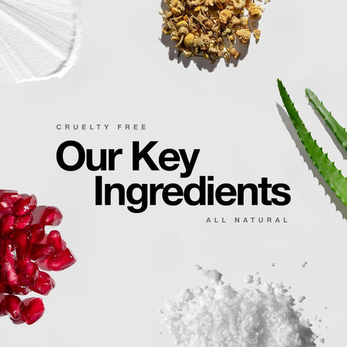 The Research Behind Our Key Ingredients