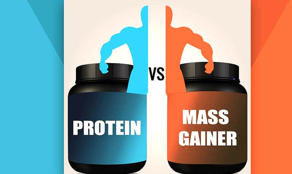 Should You Choose Whey Protein or Mass Gainer?