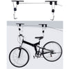 Ceiling - Bike Racks & Stand - Carpdi