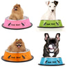 Anti-skid Stainless Steel Pet Dog Cat Feeding Bowl
