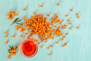Sea Buckthorn and its Anticancer Properties