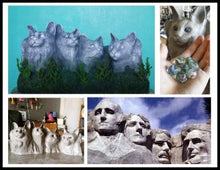 Load image into Gallery viewer, Meow-nt Rushmore