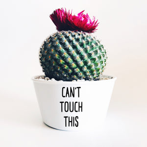 Can't Touch This Plant Pot Decal