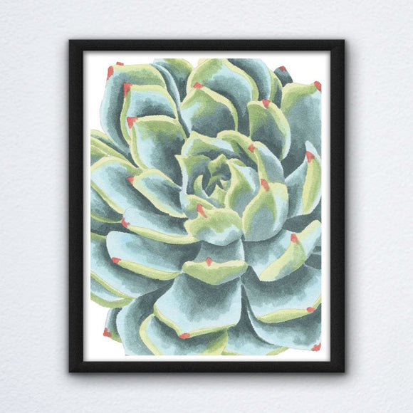 Green Succulent Cactus Wall Art