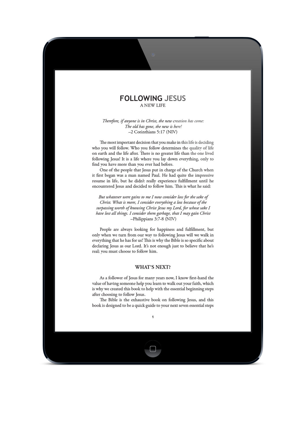Following Jesus (E-Book)