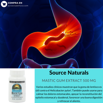 Source Naturals Mastic Gum Extract 500 Mg - 30 Cápsulas - Puro Estado Fisico
