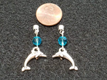 Dancing Dolphins Interchangeable Charm Set