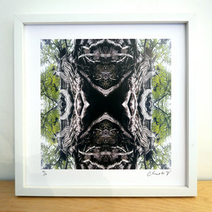 Mother Earth, White Frame