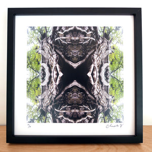 Mother Earth, Black Frame